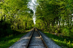 Shady Tracks (ramseybuckeye) Tags: railroad rail road rr tracks trees shade christian county kentucky oak grove fort campbell