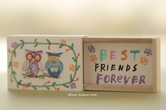 Best friend forever,Miniatures matchbox card,Valentine's Gift,cheer up box,Love,Gift for her/him,Girlfriend gift,boyfriend gift,matchbox art, birthday card, holiday card and matchbox message card ideas (charles fukuyama) Tags: illustration owl bird forest paper handmadecard custommade handpainted unique partygift greetingcard seasonalcard lovecard funnycard matchboxcard tiny miniaturescard kikuike