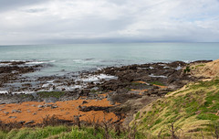 Katiki Point Lighthouse & Seal Colony (mirsasha) Tags: 2018 newzealand katikipointlighthouse sealcolony april moeraki otago nz