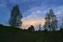 Around the may sunset II (МирославСтаменов) Tags: russia kaluzhskiye zaseki sunset cloudscape sky meadow edge spring