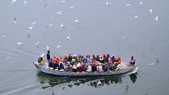 Morning Boat ride in River Ganges (pallab seth) Tags: makarsankranti varanasi people devotee tradition morning prayer ritual ganga river holydip banaras benaras india ganges religion religious belief traditional culture asia hindu hinduism bathing candid winter fog mist