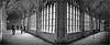 Dans le Cloître de l'abbaye, Middelbourg, Walcheren, capitale de la province de Zélande, Nederland (claude lina) Tags: claudelina paysbas nederland hollande zélande zeeland middelbourg abbaye abdij architecture cloître closter