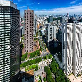 Metropolis I - Tokyo, Japan