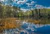 Lakeside (bjorbrei) Tags: lake water shore marsh marshland bushes forest hills countryside sky clouds trees reflections maridalen kjelsås maridalsvannet lakemaridal oslo norway