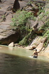 IMG_3667 (Egypt Aimeé) Tags: narrows zion national park canyons pueblos utah arizona