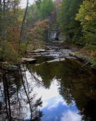 Tubb LogoDSCN2734 (StantonTubb) Tags: fall fineart nature notpickofstack outdoors tree usaeast