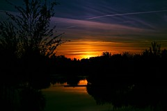 Sunset (portalealba) Tags: zaragoza zaragozaparque aragon españa spain sunset sol silueta portalealba canon eos1300d cielo atardecer agua 1001nights 1001nightsmagiccity 1001nightsmagicwindow
