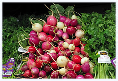 Organic Radishes (PDX Bailey) Tags: radish red white green organic vegetable fruit section produce parsley