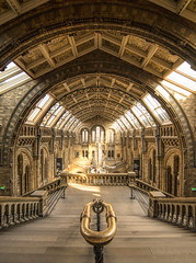 Stepping through history (grbush) Tags: london architecture gothic stairs staircase stone railing light sunlight sonyilce7 tokinaatx116prodxaf1116mmf28 city street naturalhistorymuseum museum arches