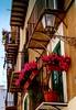 Piccole cose belle (dona(bluesea)) Tags: piccolecosebelle littlebeautifulthings balcone balcony balconefiorito floweredbalcony fiori flowers gerani geraniums lampione streetlamp palermo sicilia sicily