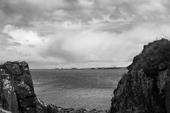 Lauriston and Crammond with Alastair April 2018 (107 of 126) (Philip Gillespie) Tags: crammond lauriston castle keep gardens park green blue red yellow orange colour color mono monochrome black white sea seascape landscape sky clouds drama dramatic walkway path flowers leaves trees april spring defences canon 5dsr people rust metal grafitti man dog petals bluebells dafodils holly blossom pond forth water wet rain sun reflections architecture mirrors gold japan garden sunlight scotland