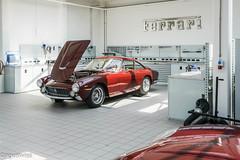Ferrari 250 GT Lusso (aguswiss1) Tags: supercar lusso nhfer baselferrari flickrcar dreamcar amazingcar nikihasler v12 carlover exoticcar carheaven flickr auto carspotting switzerland ferraribasel 250 sportscar fastcar ferrari hillclimb classiccar carswithoutlimits caroftheday carporn car
