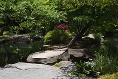 nice rock feature at Gibbs Gardens (Georgia, USA) (rootcrop54) Tags: gibbsgardens ballgroundgeorgia cherokeecounty georgia may2018 northgeorgia gardens