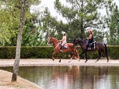 Paseo a caballo-_8030468 (peruchojr) Tags: caballo monte árbol valladares lago montedospozos