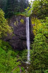 Latourell Falls (sandy bohlken) Tags: columbiagorge latourellfalls oregon waterfall 2018 april