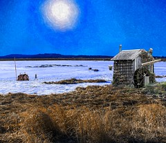 Under the Winter Sun (Rusty Russ) Tags: salt marsh winter ice sky sun cabin blue colorful day digital window flickr country bright happy colour eos scenic america world sunset beach water red nature white tree green art light cloud park landscape summer city yellow people old new photoshop google bing yahoo stumbleupon getty national geographic creative composite manipulation hue pinterest blog twitter comons wiki pixel artistic topaz filter on1 sunshine image reddit tinder