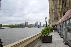 DSC_8979 (photographer695) Tags: auspicious launch wintrade 2018 hol london welcomes top women entrepreneurs from across globe with opening high tea terraces river thames historical house lords