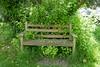 "P1090440 (harryboschlondon) Tags: ""plants treesandflowers""botanicalbotany""botanicalphotography""""botanyphotography""naturephotographynatureenglandenglandphotographyharryboschharryboschharryboschphotographyharryboschphotographyharryboschflickrharryboschflickr may may2018 green wokingham wokinghamberkshire berkshire church churchyard bench"