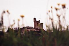 (Federico Raviele) Tags: film photogrpahy analog tuscany