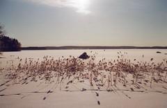 Snowy lake (ture360) Tags: minoltadynax7000i maf3570f4 fujicolorsuperiaxtra400 filmcamera mallasvesi pälkäne epsonv200 selfscanned