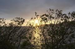 Sol de Octubre (Tomás Hornos) Tags: atardecer sunset puestadesol sun sol mar sea playa beach roca cielo sky clouds siluetas contraluz mediterreanean mediterráneo agua rayosdesol horadorada almuñécar paisaje d7100 seascape