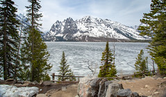 Jenny Lake, Grand Teton National Park, Wyoming. (scepdoll) Tags: findyourpark colterbay grandtetonnationalpark jackson jacksonlake jennylake stringlake tetons wyoming bears frozen landscape mountains raven sunrise spring