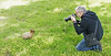 Photographer in the Field (sea turtle) Tags: bunny rabbit bunnies rabbits langley whidbeyisland whidbey island animals animal cute fluffy outdoors washington washingtonstate northwest pacificnorthwest michaelchuck photographer ears rabbitears