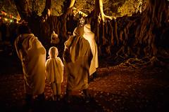 Epiphany Celebrations (Leonid Plotkin) Tags: africa celebration christian christianity church epiphany ethiopia festival gondar gonder pilgrim pilgrimage pilgrims religion religious timkat tradition traditional