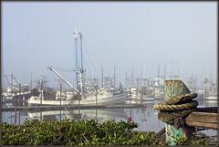 Mooring (2bmolar) Tags: landscape seascape bay mooring ships dock newport oregon