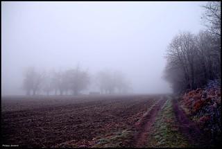 Coulongé (Sarthe)