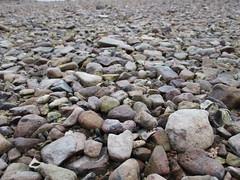 Wu Kai Sha Beach (wilwilwilsonsonson) Tags: hongkong newterritories maonshan wukaisha 香港 新界 馬鞍山 烏溪沙 wukaishabeach 烏溪沙沙灘 pebble