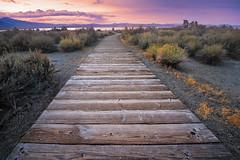Tufa Trail (David Colombo Photography) Tags: monolake tufa tufas path walkway wooden shrubs brush clouds sunset color vibrant nikon d800 davidcolombo davidcolombophotography outdoor landscape lake sierranevada sierranevadamountains california leevining
