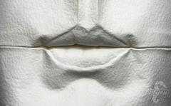 Lips (mitanei) Tags: danielchang origami paper paperfolding papersculpture folding origamiart art artwork artist artistlife sculpture paperart mitanei keepfoldingon kunst papierkunst origamistuttgart falten origamiface papercraft creativeminds face papermask faces faltkunst nassfalten lips mouth mund lippen human