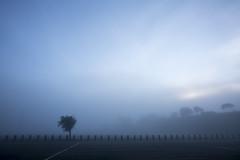 blues (eb78) Tags: ca california eastbay flemingpoint albany