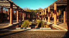 Jardim romano (vmribeiro.net) Tags: ponte lima portugal jardim romano garden sony z1 park architecture tree grass roman