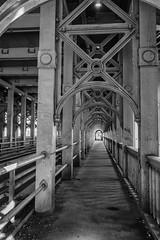 High Level (stevefge) Tags: 2018 bridge newcastle northeast tyne uk iron geometry perspective blackandwhite bw zw zwartwit monochrome structures reflectyourworld
