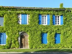 Les volets bleus (Daniel Biays) Tags: maison house vignevierge voletsbleus saintseurindecadourne gironde fenêtres windows porte door
