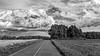 ile 2018-57 (Tasmanian58) Tags: clouds blackandwhite wild fields road orleansisland island quebec canada nikon 2485 nikor bw nb noiretblanc cereales wheat barley