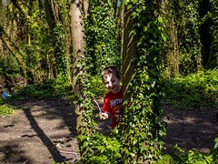 Hide-and-Seek (Mad Cow Imagery) Tags: canonefs1855mmf3556isstm canoneos80d memories child smile boy son forest wood tree common oughtonhead hertfordshire hitchin england gb greatbritain uk unitedkingdom portrait