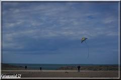 cerveau lent.... (Fotomaniak 53) Tags: cerf volant plage bretagne vent bleu