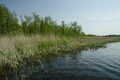 IMGP14138 (Łukasz Z.) Tags: lubelskie rzeczpospolitapolska poleskiparknarodowy nationalpark sigma1750mmf28exdchsm pentaxk3