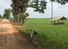 Cambodia, Prey Veng Province, Peam Ro District, Peam Mean Chey Commune (Die Welt, wie ich sie vorfand) Tags: kingdomofcambodia cambodia កម្ពុជា bicycle cycling architecture building ខេត្តព្រៃវែង peammeanchey preyvengprovince preyveng peamrodistrict peamro peammeancheycommune kocmo singlespeed