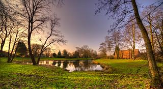Peaceful pond.