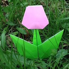 tulip by Kazue Asai (maplecrane) Tags: origami spring flower tulip mothers day