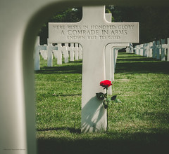 American cemetery France / Normandie. A comrade in arms known but to GOD. (By Corsu) Tags: american cemetery france normandie cimetiere soldat soldier army armée debarquement rose flower glory honor tombe mort us usa lumix gx9 by corsu flickr french 1944 wwii normandy dday