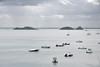 Baie de Cancale (maxguitare1) Tags: boats bateaux barcos barche île isola island isla eau agua acqua water mer manche mar sea nikon bretagne france