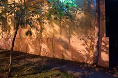 . (_ИГ) Tags: ds2 shadows veg plusc