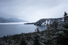 Icy Adventures (Aymeric Gouin) Tags: canada newfoundland terreneuve nature ocea sea mer atlantic atlantique snow neige winter hiver ice glace trees arbres forest foret landscape paysage paisaje landschaft light outdoors travel voyage fujifilm xt2 aymgo aymericgouin
