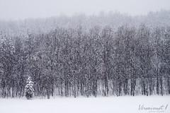 Charlevoix 18 avril 2018 (Véronimot) Tags: charlevoix neige