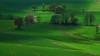 Green (Lutz Koch / off and away some weeks) Tags: green grün idsteinerland idstein dasbach taunus hessen hesse field feld frühling spring elkaypics lutzkoch light licht wiese polfilter polarized